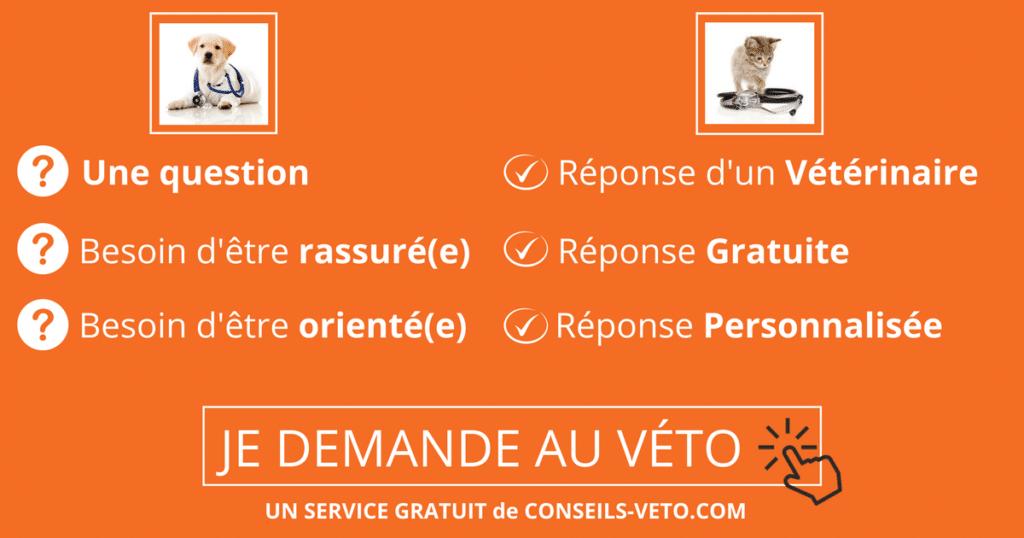 Conseils Vétérinaires Gratuits En Ligne – Posez Votre Question Ici 321cd350f823
