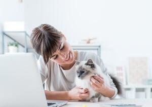 technologies objets connectés santé chien chat