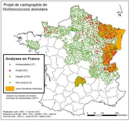 carte-echinococcose france départements risque contamination